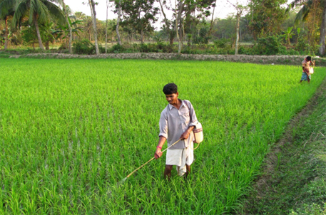 use of pesticides application on cultivated fields book