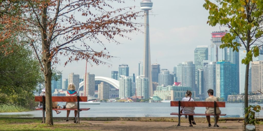 city of toronto contractor application for tree planting